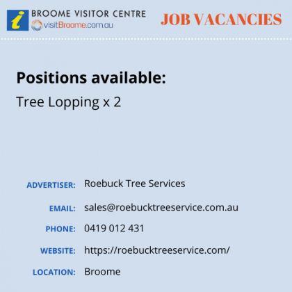 Bvc jobs board tree